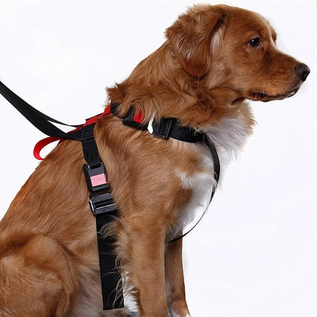 Artfex Dog Harness Bilsele Large